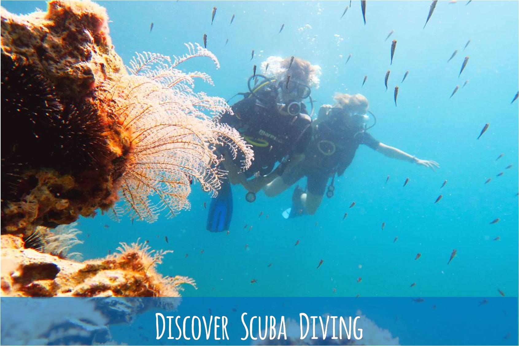Bautizo / Discover Scuba Diving